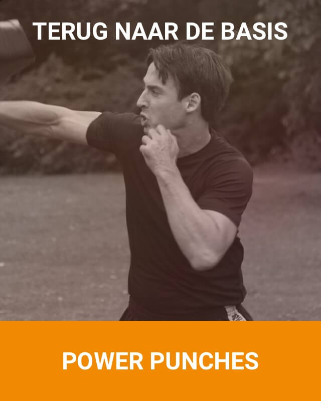 Puwer Punches